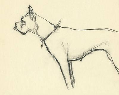 Designs Similar to A Boxer Dog