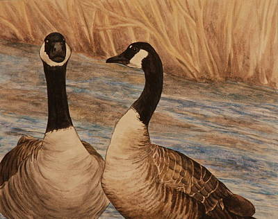 Designs Similar to Canadian Geese