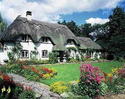 Designs Similar to Thatched Eaves Cottage