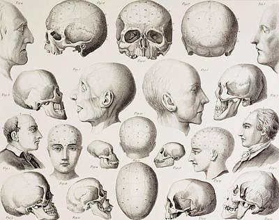 Psychiatric Drawings Prints