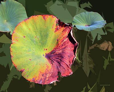 Designs Similar to Autumn Lotus Leaves Four