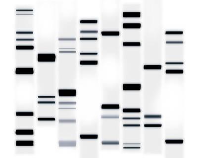Molecule Art Prints