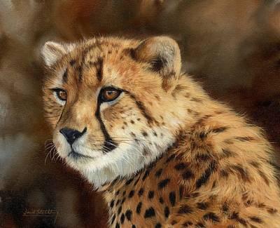 Cheetah Art Prints