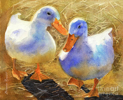 Domestic Duck Art