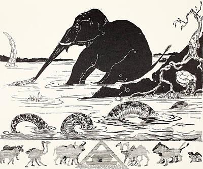 Burmese Python Drawings