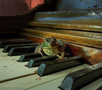 Bull Frog Photographs