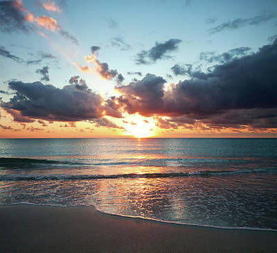 Designs Similar to Sunrise In Miami by Tovfla