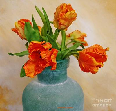 Designs Similar to Baby Parrot Tulips