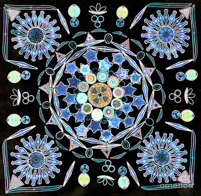 Diatoms Art