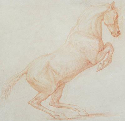 bucking horse drawings