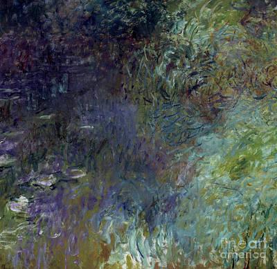 Designs Similar to Nympheas, Matin By Monet
