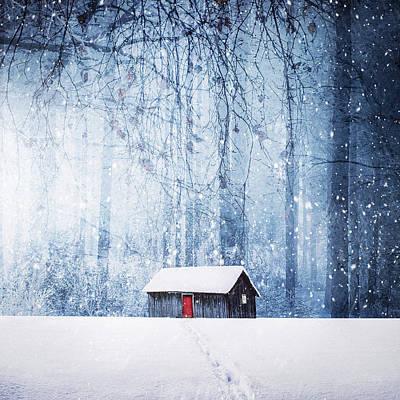 Designs Similar to Winter by Bess Hamiti