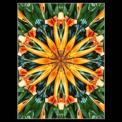 Lilies Digital Art
