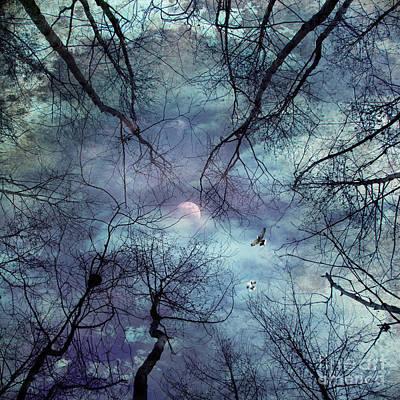 Abstract Night Sky Prints