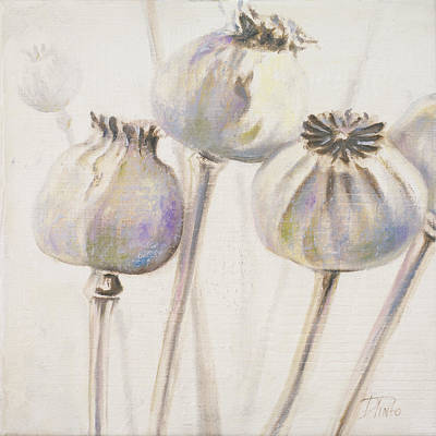 Designs Similar to Poppy Seeds I by Patricia Pinto