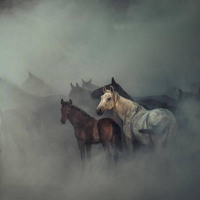 Designs Similar to The Lost Horses