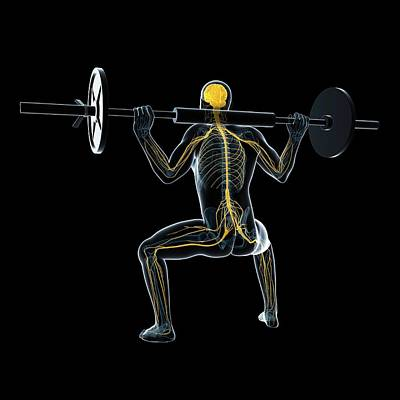 Designs Similar to Weightlifter