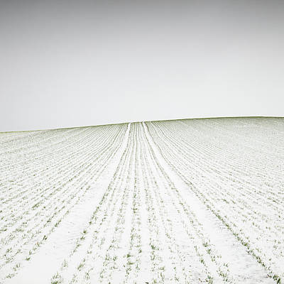 Designs Similar to Winter Crop by Martin Rak