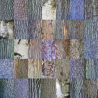 Bark Photographs Original Artwork