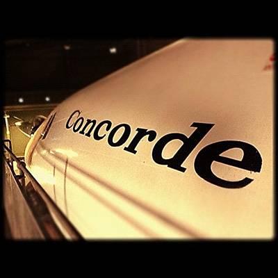 Designs Similar to Concorde by Chris Davison