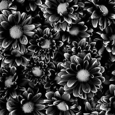 Designs Similar to A Bouquet  by Masako Metz
