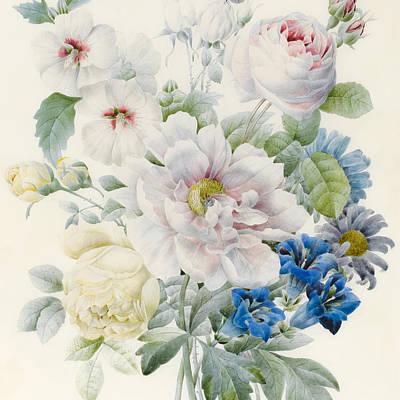 Hibiscus Drawings