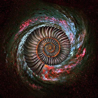 Ammonites Digital Art