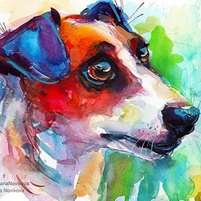 Designs Similar to Emotional Jack Russell Terrier