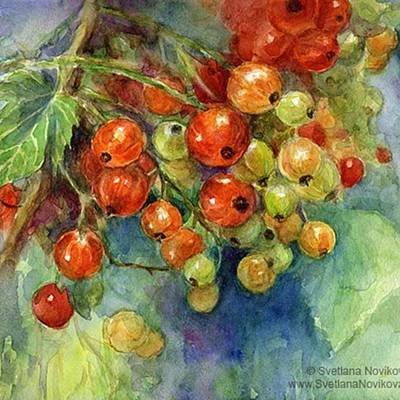 Designs Similar to Red Currants Berries Watercolor