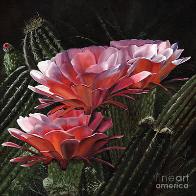 Mary Rogers Paintings