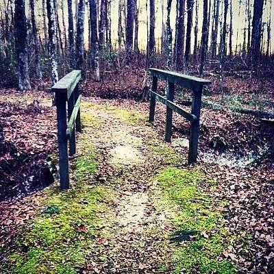 Designs Similar to #trail #bridge #path