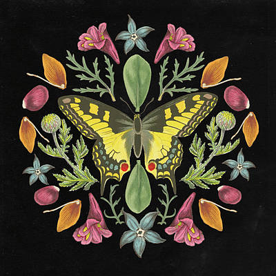 Designs Similar to Butterfly Mandala IIi Black
