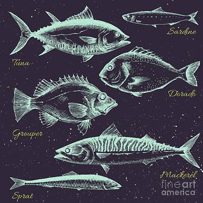 Shrimp Digital Art