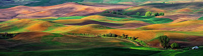 Palouse Photographs