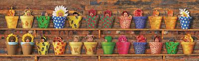 Pots Photographs