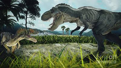 Tyrannosaurus Rex Photographs
