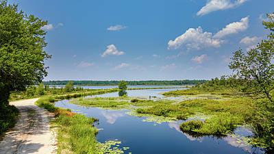 Photograph - Summer Landscape at Whites Bog by Louis Dallara