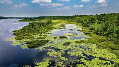 Photograph - Whitesbog Summer Landscape by Louis Dallara