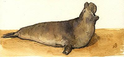 Elephant Seal Wall Art