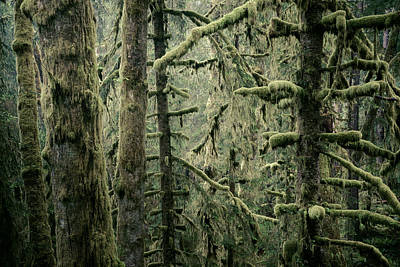 Clatsop County Photographs