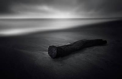 Lumber Photographs