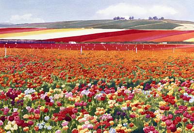 Ranunculus Paintings