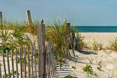 Sand Dunes Art