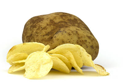 Potato Photographs