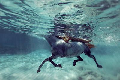 Underwater with Enric Gener Wall Art