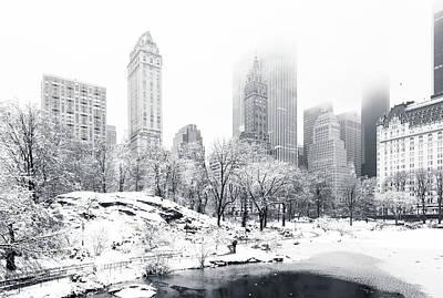 Snow Scene Photographs
