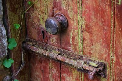 Photograph - Forgotten Doorway by Andrew Verdi