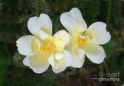 Digital Art - Two Yellow Roses by EGiclee Digital Prints