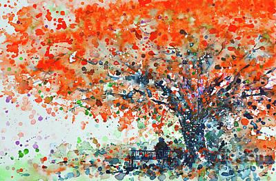 Flamboyant Tree Art Prints