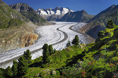 Aletsch Glacier Art